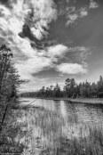 _MG_7895-Edit-Edit