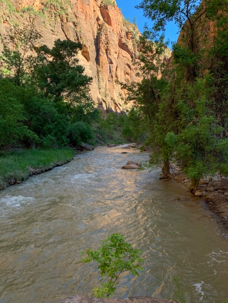 capturing some of the reflected light that Zion Canyon is known for