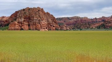Shot along Kolob Terrace rd on way back from our hike at Wildcat Canyon trail